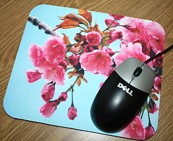 Spring Blossoms Mouse Mat